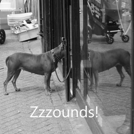 zzzounds ad 4