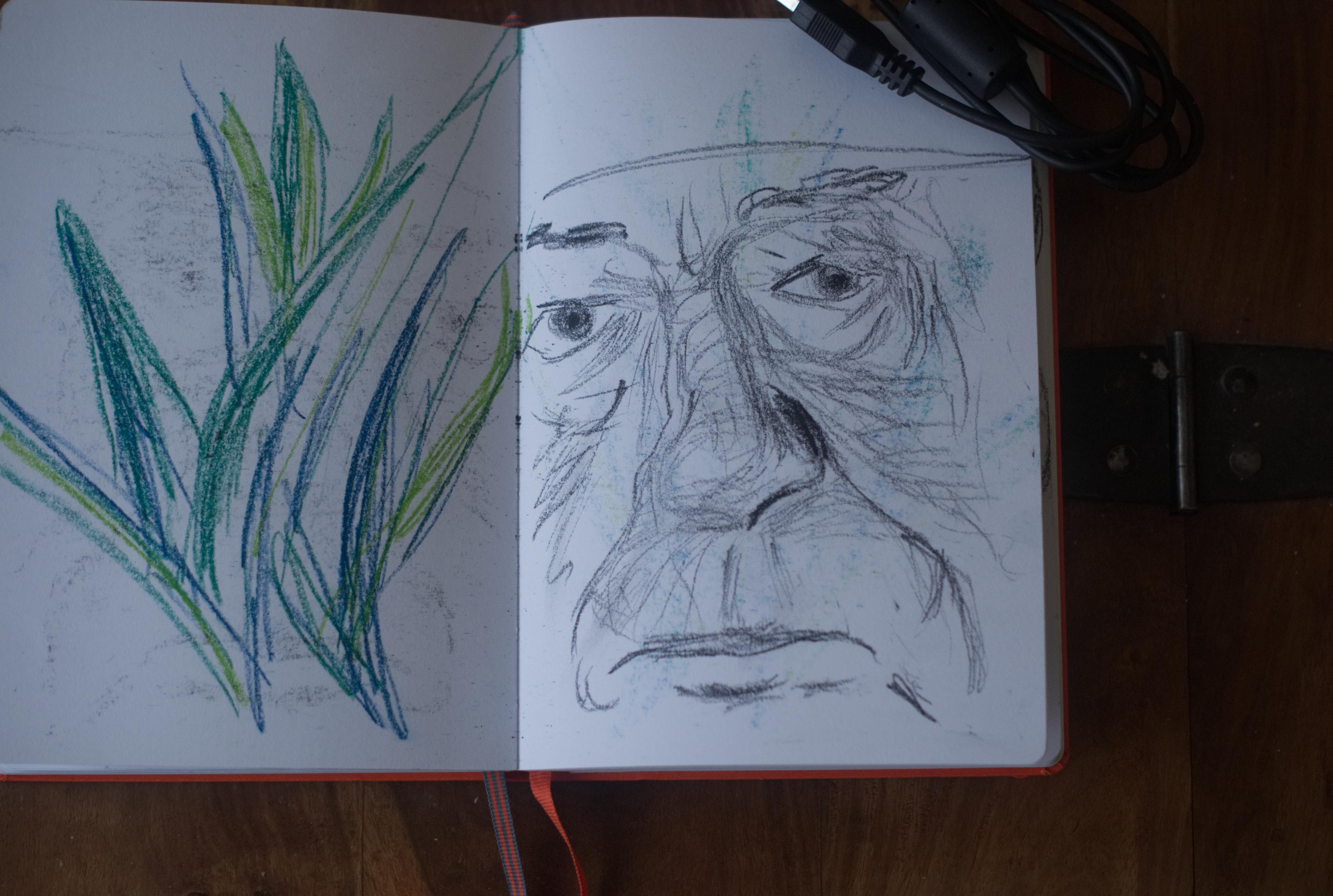 Sketchbook (Gambon detail)